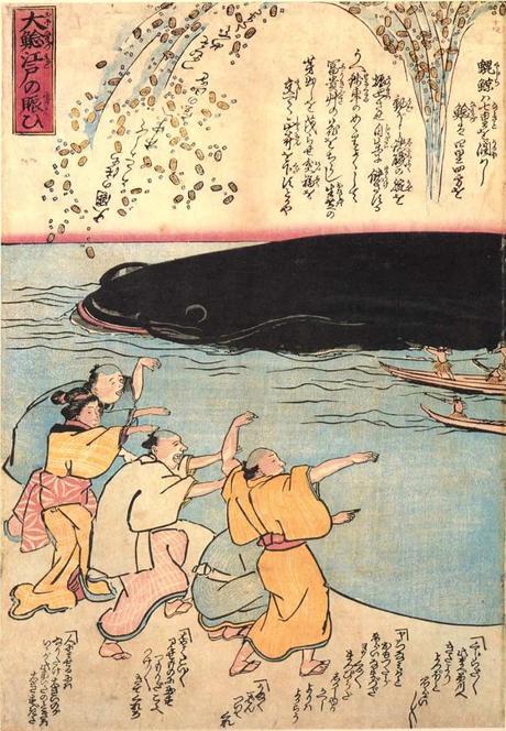 namazu-il-grande-pesce-che-causa-i-terremoti--L-vxNXbI